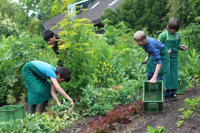 Gartenbau Bund Der Freien Waldorfschulen